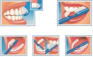 posizioni spazzolino per lavarsi i denti