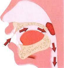 Schema di come si repsira dalla bocca